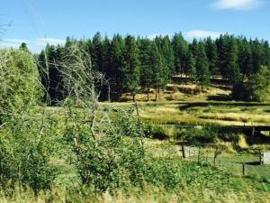 Potlach Idaho Sep 2015